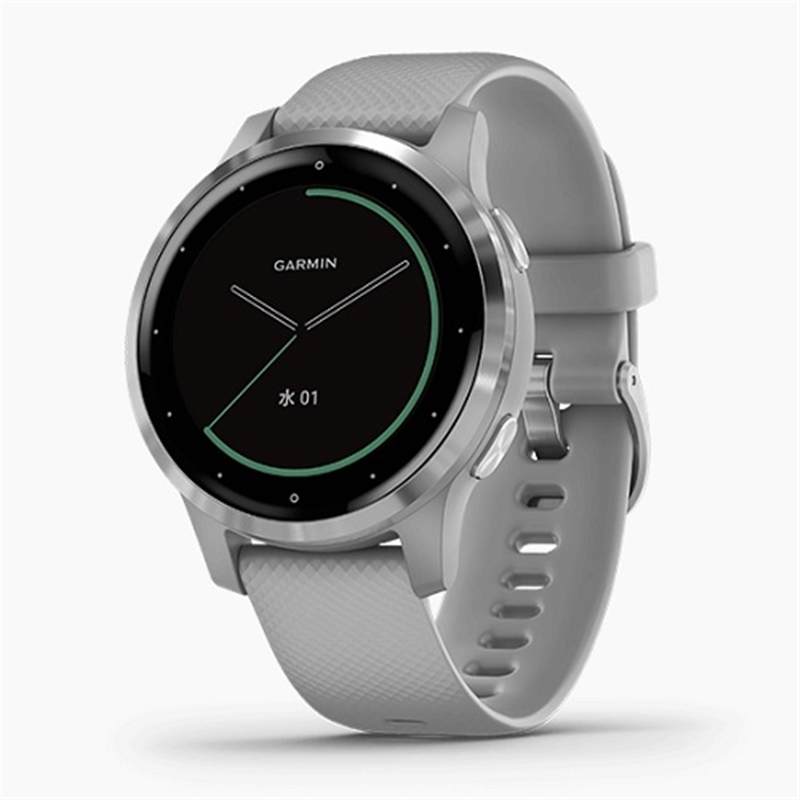 GARMIN vivoactive 4S Powder Gray / Silver 010-02172-07