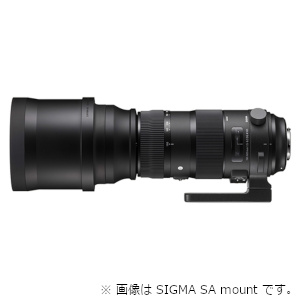 SIGMA 交換用レンズ ニコンFマウント 150-600mm F5-6.3 DG OS HSM(ニコン)