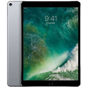 APPLE 10.5iPadPro WiFi256GB MPDY2J/A(IPAD PRO 10.5-IN WI-FI 256GB GRAY)
